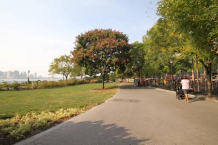 Battery Park City Rentals