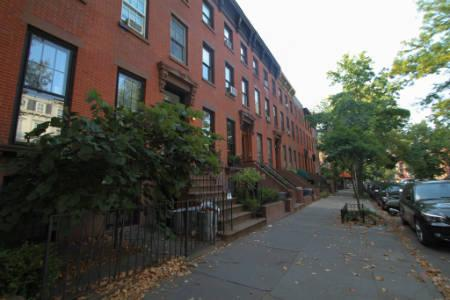 Apts Clinton Hill/Fort Greene